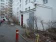 Екатеринбург, ул. Мичурина, 231: приподъездная территория дома