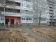 Екатеринбург, ул. Большакова, 17: приподъездная территория дома