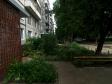 Тольятти, пр-кт. Московский, 35: приподъездная территория дома