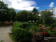 Тольятти, Moskovsky avenue., 33: приподъездная территория дома