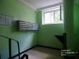 Тольятти, Sverdlov st., 47: о подъездах в доме
