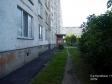 Тольятти, Kulibin blvd., 11: приподъездная территория дома