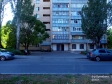 Тольятти, б-р. Кулибина, 12: приподъездная территория дома