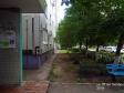 Тольятти, ул. 70 лет Октября, 34: приподъездная территория дома
