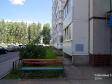 Тольятти, Ryabinoviy blvd., 2: приподъездная территория дома