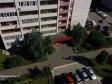 Тольятти, б-р. Рябиновый, 6: приподъездная территория дома