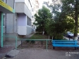 Тольятти, ул. Тополиная, 3: приподъездная территория дома