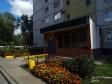 Тольятти, Stepan Razin avenue., 80: приподъездная территория дома