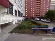 Тольятти, Stepan Razin avenue., 82: приподъездная территория дома
