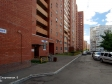 Тольятти, Sportivnaya st., 8: приподъездная территория дома