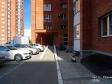 Тольятти, Stepan Razin avenue., 86: приподъездная территория дома