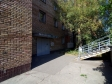 Тольятти, Stepan Razin avenue., 45: приподъездная территория дома