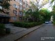 Тольятти, Stepan Razin avenue., 55/8: приподъездная территория дома