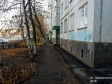Тольятти, ул. Дзержинского, 31: приподъездная территория дома