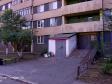 Тольятти, ул. 70 лет Октября, 59: приподъездная территория дома