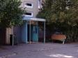 Тольятти, ул. Автостроителей, 1: приподъездная территория дома