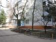 Краснодар, ул. Яна Полуяна, 52: приподъездная территория дома