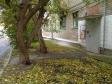 Екатеринбург, Akademik Gubkin st., 81А: приподъездная территория дома