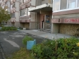 Екатеринбург, Mashinnaya st., 38: приподъездная территория дома