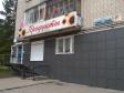 Екатеринбург, ул. Селькоровская, 100/2: положение дома