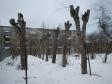 Екатеринбург, Krasnoflotsev st., 25А: о дворе дома