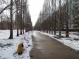 Тольятти, б-р. Туполева, 4: площадка для отдыха возле дома
