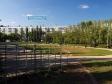Тольятти, б-р. Туполева, 13: спортивная площадка возле дома