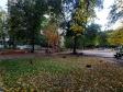 Тольятти, Kurchatov blvd., 10: о дворе дома