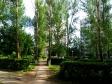 Тольятти, ул. 40 лет Победы, 114: о дворе дома