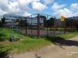 Тольятти, б-р. Баумана, 8: спортивная площадка возле дома