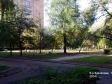 Тольятти, Kurchatov blvd., 14: о дворе дома