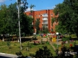 Тольятти, б-р. Кулибина, 19: детская площадка возле дома
