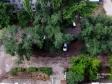 Тольятти, Frunze st., 31: о дворе дома
