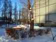 Тольятти, ул. Ворошилова, 4: о дворе дома