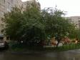 Екатеринбург, Kuybyshev st., 84/1: о дворе дома