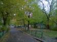 Екатеринбург, ул. Сурикова, 37: о дворе дома