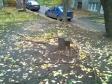 Екатеринбург, ул. Чайковского, 15: площадка для отдыха возле дома