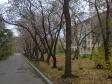 Екатеринбург, Posadskaya st., 51: о дворе дома